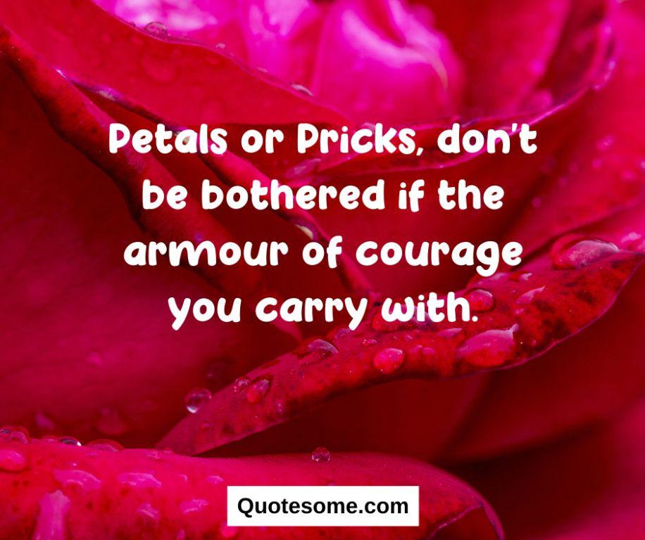 Aesthetic quotes